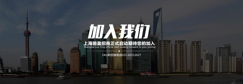 上海骆盈橡胶接头招商